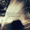 albumhoes van If You Leave (Daughter)